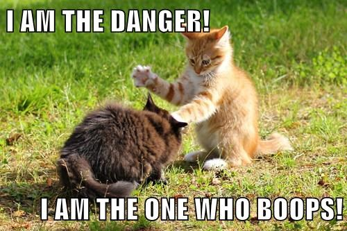 I AM THE DANGER!  I AM THE ONE WHO BOOPS!
