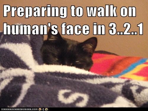 Preparing to walk on human's face in 3..2..1