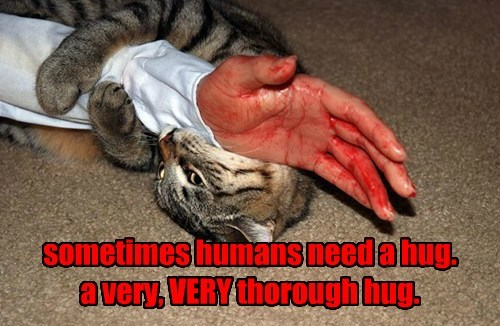 sometimes humans need a hug. a very, VERY thorough hug.