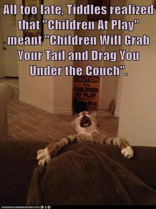 "All too late, Tiddles realized that ""Children At Play"" meant ""Children Will Grab Your Tail and Drag You Under the Couch""."