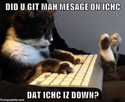 DID U GIT MAH MESAGE ON ICHC  DAT ICHC IZ DOWN?
