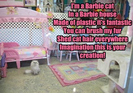 I'm a Barbie cat  In a Barbie house Made of plastic it's fantastic You can brush my fur Shed cat hair everywhere Imagination this is your creation!