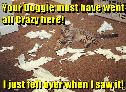 Your Doggie must have went all Crazy here!   I just fell over when I saw it!