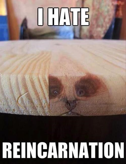 faces in things,reincarnation