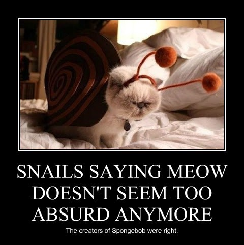 SNAILS SAYING MEOW DOESN'T SEEM TOO ABSURD ANYMORE