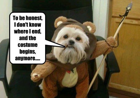 Can You Take Me for an Ewok Outside?