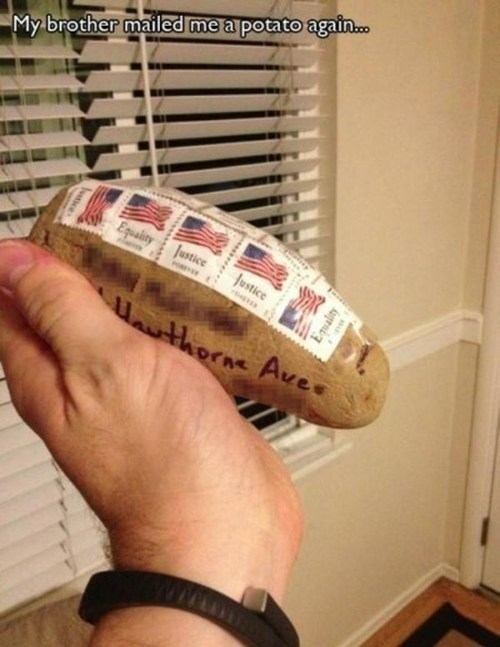 Always Accept a Freedom Potato
