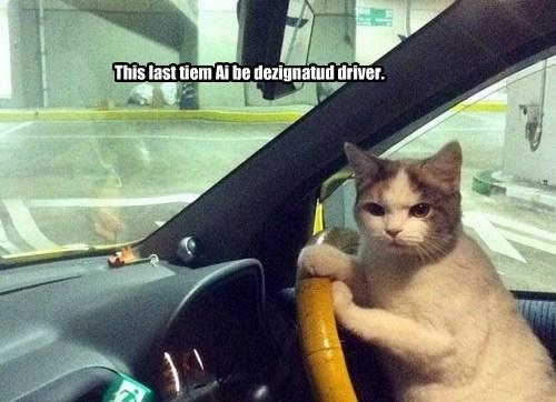 This last tiem Ai be dezignatud driver.