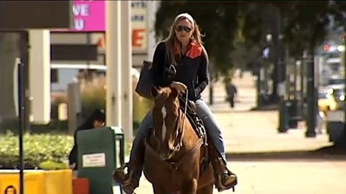 Not a Single Damn of the Day: Woman Rides Horse to DMV in Protest
