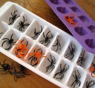 spiders,halloween,g rated,DIY