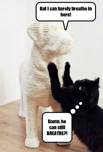 Artist kitteh has watched too many Vincent Price movies.