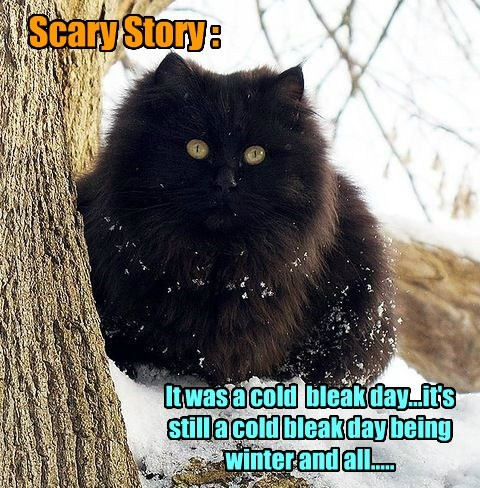 Scary Story :