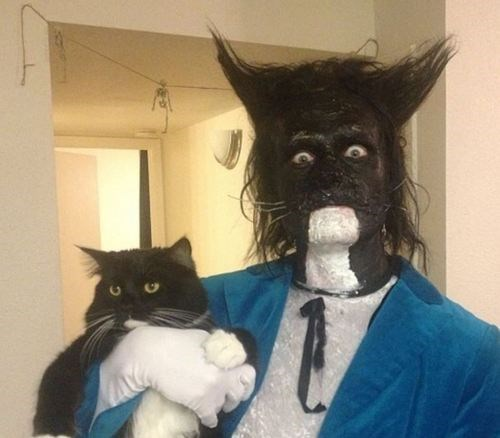 Is it Good Luck if a Guy Carrying a Black Cat Crosses Your Path on Halloween?
