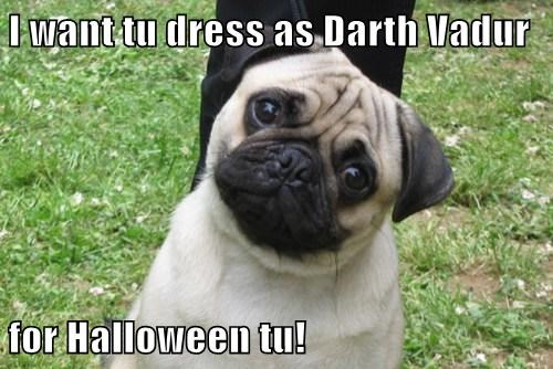 I want tu dress as Darth Vadur  for Halloween tu!