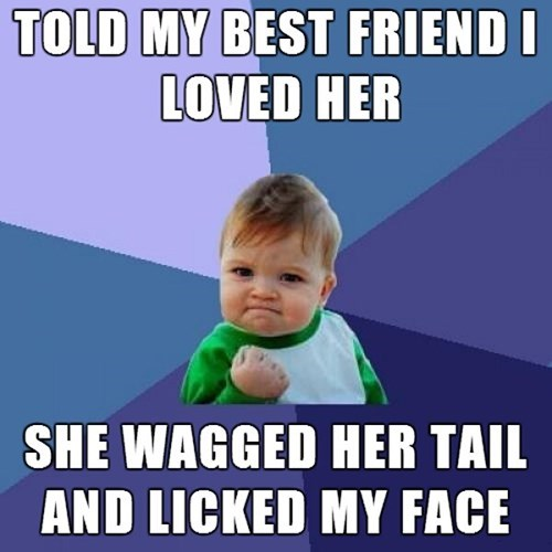 Man's Best Friendzone - NO LONGER