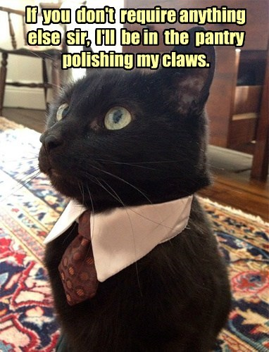 Downton Tabby - Catson the Butler