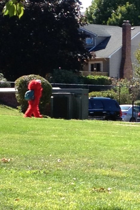 Mom, Dad, I Saw Elmo!
