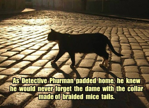 As  Detective  Phurman  padded  home,  he  knew  he  would  never  forget  the  dame  with  the  collar  made of  braided  mice  tails.
