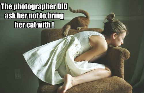 The photographer DID ask her not to bring her cat with !
