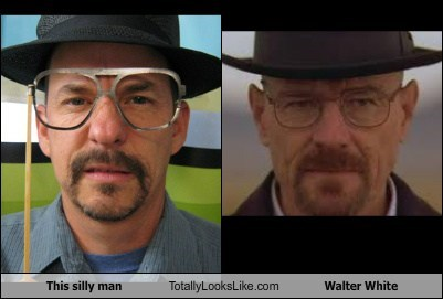 This silly man Totally Looks Like Walter White