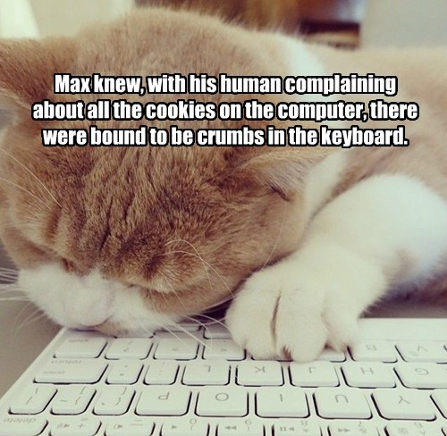Max knew, with his human complaining about all the cookies on the computer, there were bound to be crumbs in the keyboard.