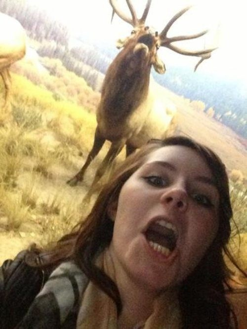 photobomb,stag,expression