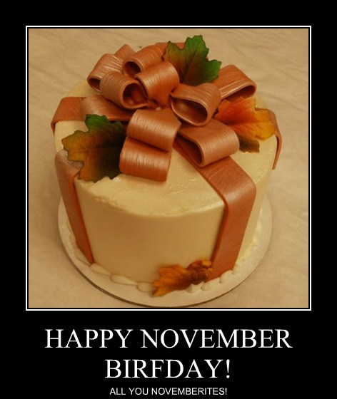 HAPPY NOVEMBER BIRFDAY!