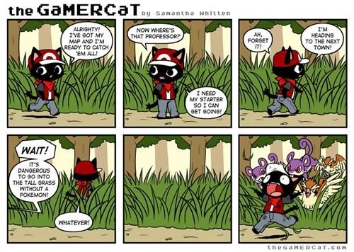 Pokémon,video games,web comics