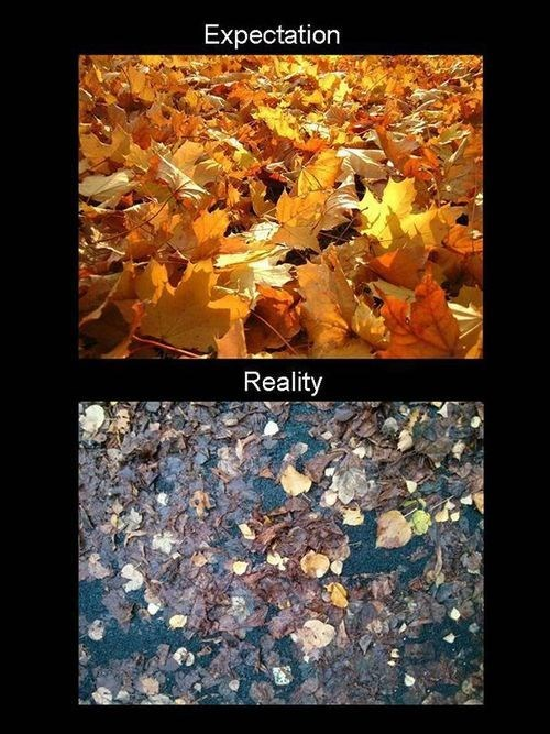 Fall is Depressing