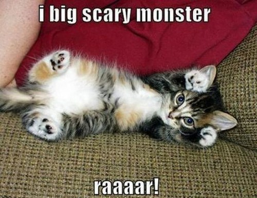 kitten,monster,cute,Cats