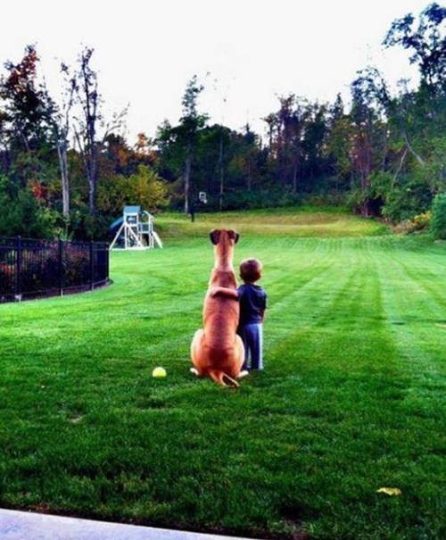 They Both Saw You Throw it...They Just Can't See Where it Went...