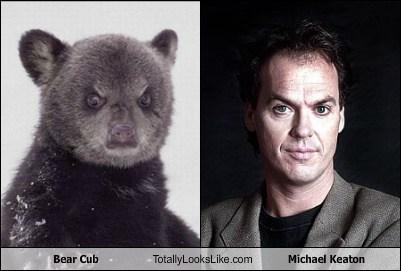bear cub,Michael Keaton,totally looks like,funny