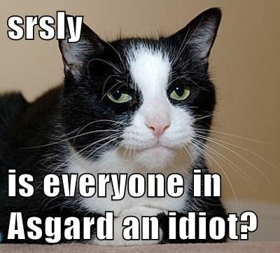 srsly  is everyone in Asgard an idiot?