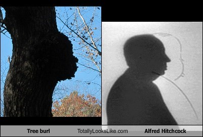 alfred hitchcock,totally looks like,tree burls,funny