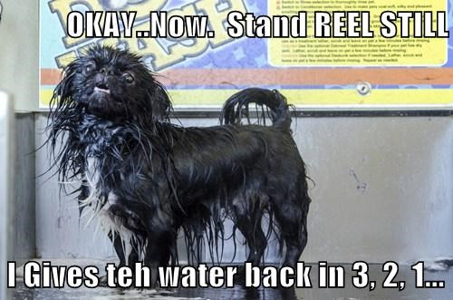 OKAY..Now.  Stand REEL STILL  I Gives teh water back in 3, 2, 1...