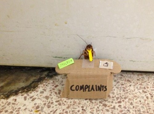 A cockroach sitting at her desk and waiting for customers.