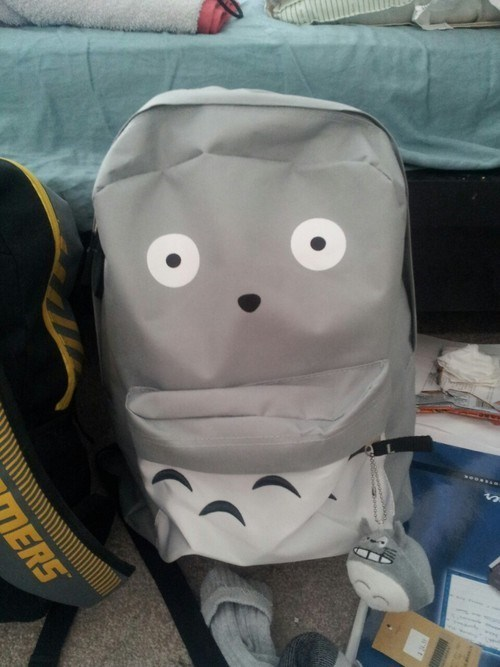 awesome,backpack,funny,totoro,g rated,School of FAIL