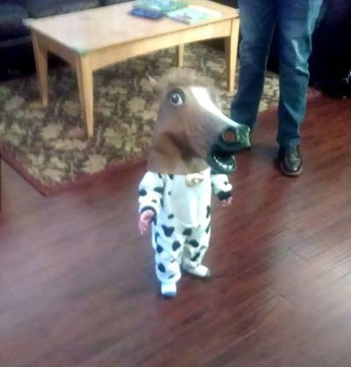 Babies,horse mask,parenting