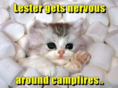 Lester gets nervous  around campfires..