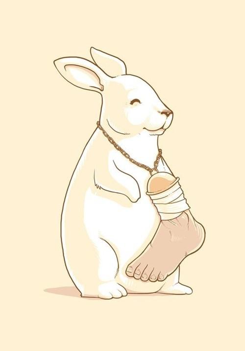 animals,pun,rabbit,luck