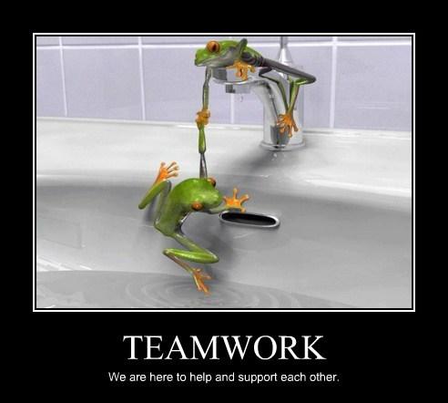 water,teamwork,frogs
