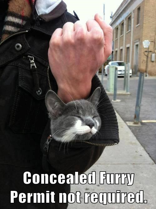 Concealed Furry Permit not required.
