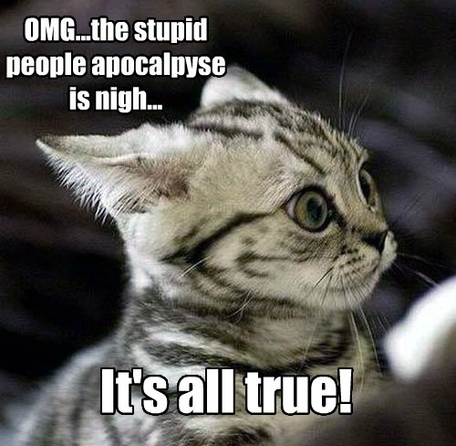 Stupid People Apocalypse