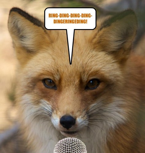 What Does The Fox Say???