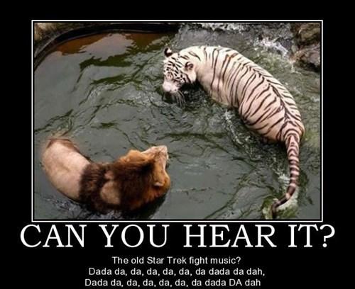 Captain Kirk,funny,lions,Star Trek,Music,Spock,tigers