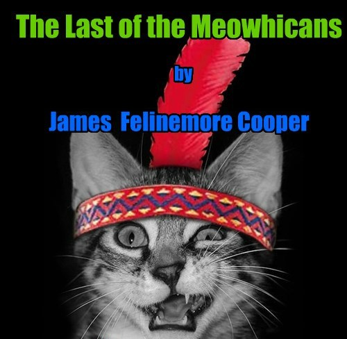 The Last of the Meowhicans