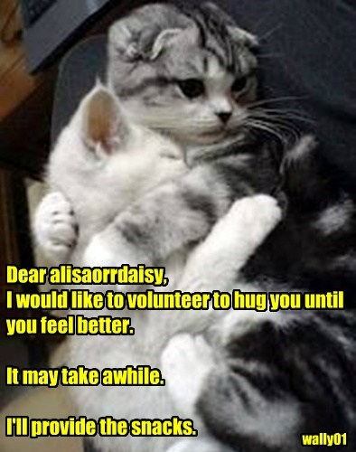 Dear alisaorrdaisy, I would like to volunteer to hug you until you feel better.  It may take awhile.  I'll provide the snacks.