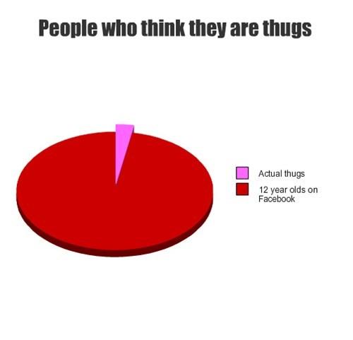 facebook,Pie Chart,social media,thug life