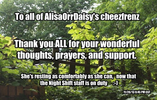 To all of AlisaOrrDaisy's cheezfrenz