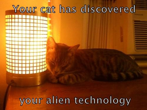 Your cat has discovered       your alien technology